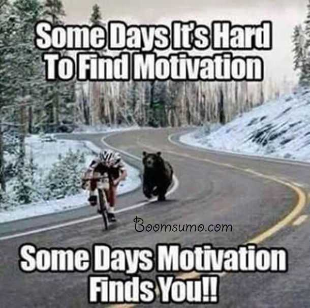 Funny Quotes Worth Laughing Over encouraging quotes Some Days Motivation finds You