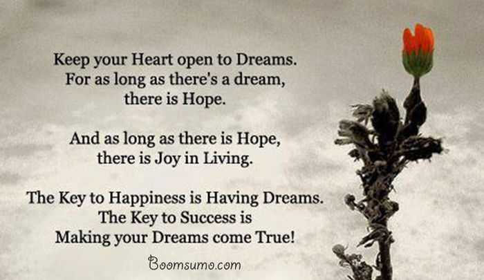 Dreams Quotes About Achieving Success Dreams Come True Quotes Life
