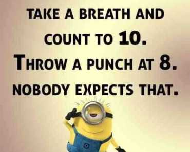 humorous quotes Nobody Expects That funny sayings
