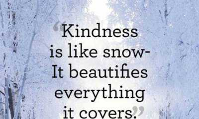 Beautiful kindness quotes If You Give quotes about kindness