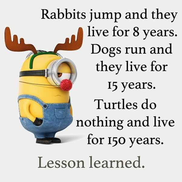 "Funny Quotes About Life: Cool Funny Quotes: ""Do Nothing Live 150 Years"" Funny"