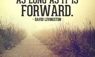 Inspirational Quotes About Life I will Go Forward life quotes