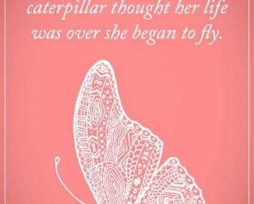 Positive Quotes About Life Life Sayings When She began To Fly inspirational words of encouragement