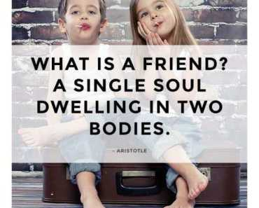 best friendship quotes What is Friends short friendship quotes about life