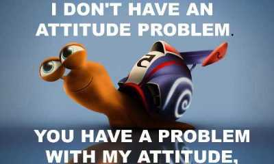 cool funny quotes If You have Attitude Problem Try Me funny Sayings