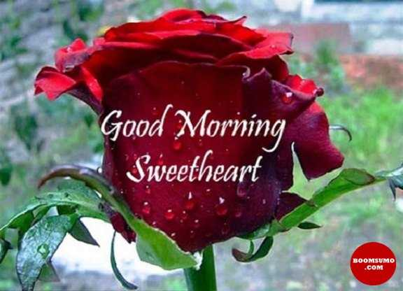 Good Morning Quotes For Her Sweetheart Good Morning, My Love