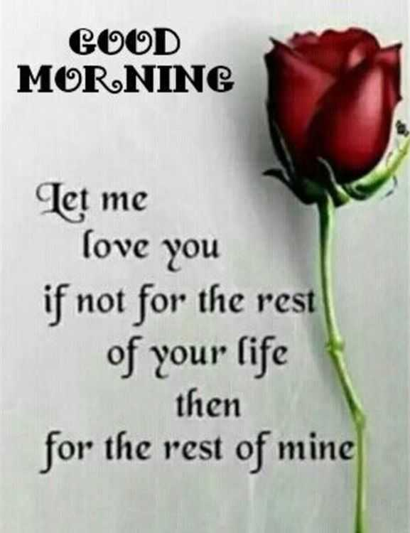 Good Morning Quotes Love Sayings Good Morning Let Me Love You Love