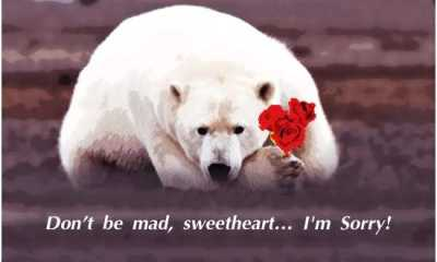 Heart Broken Sad Love Quotes Sweetheart I Am Sorry, If Really I Hurt You