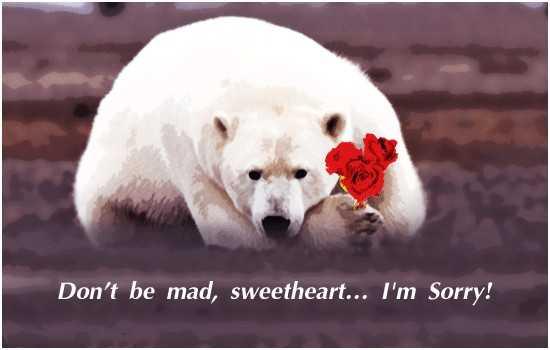 Heart Broken Sad Love Quotes Sweetheart I Am Sorry, If Really I Hurt You
