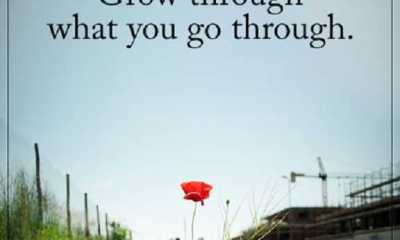 Inspirational Life Quotes Life Sayings What you Go through, Grow It