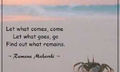 Inspirational life quotes Life Sayings Let What Goes, Find Out What Remains