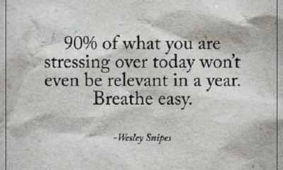 Inspirational life quotes What you are stressing