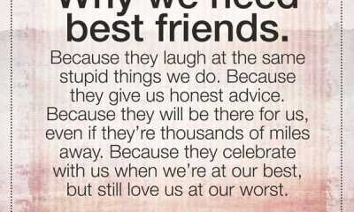 Friendship Quotes About Best Good friend Why We Need it