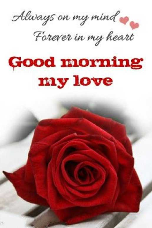 Nice Good Morning Quotes: Forever My Heart My Love Good Morning