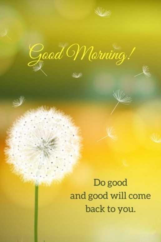 Good Morning Quotes: Life sayings Good Morning Do Good and ...