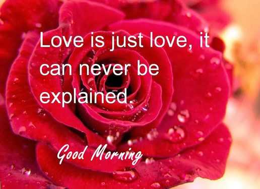 Good Morning Quotes: Love sayings Good Morning Love Is Just