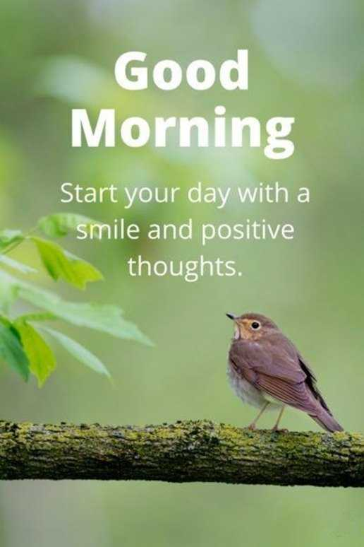 Good morning quotes good morning start your day smile and positive good morning quotes good morning start your day smile and positive thoughts voltagebd Choice Image