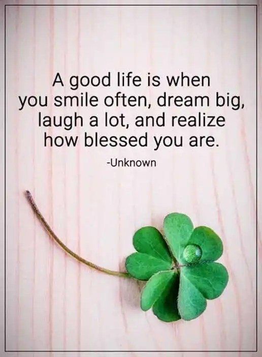 Good Life Quotes Best Inspirational Life Quotes A Good Life Smile Often Dream Big