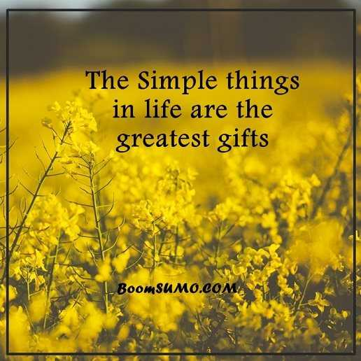 Positive Life Quotes Life Sayings Simple Life Things Are Greatest