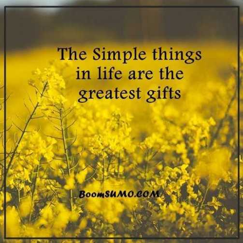 Positive life quotes life sayings simple life things are greatest positive life quotes life sayings simple life things are greatest gifts keep going altavistaventures Choice Image