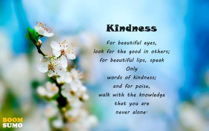 Kindness Quotes This Is The Only Reason