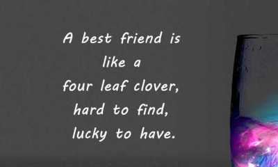 BestFriendship QuotesHardToFindHow ToBeKeep
