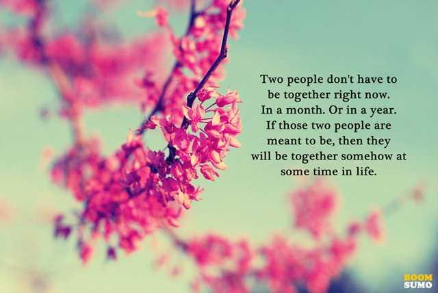 Best Life Quotes What Happens When They Will Be Together