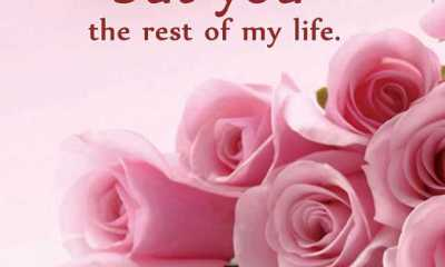 Cool love Quotes and love sayings 'I love two things, love life