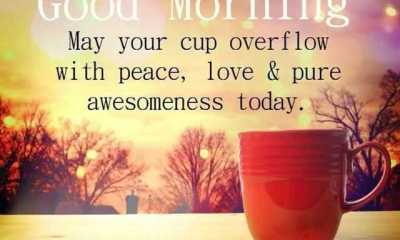 Good Morning Quotes That Will Make Overflow With Peace Love