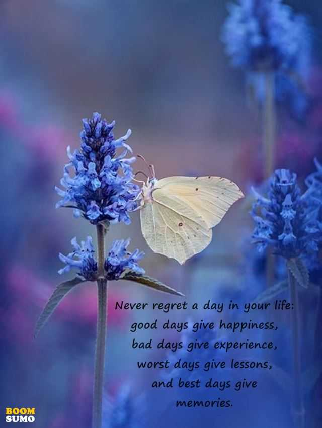 Inspirational Life Quotes Ill Cry Less Good Days Give Happiness
