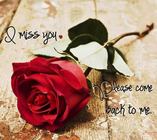 Sad Love Quotes I Miss You Please Come Back To Me Boomsumo Quotes
