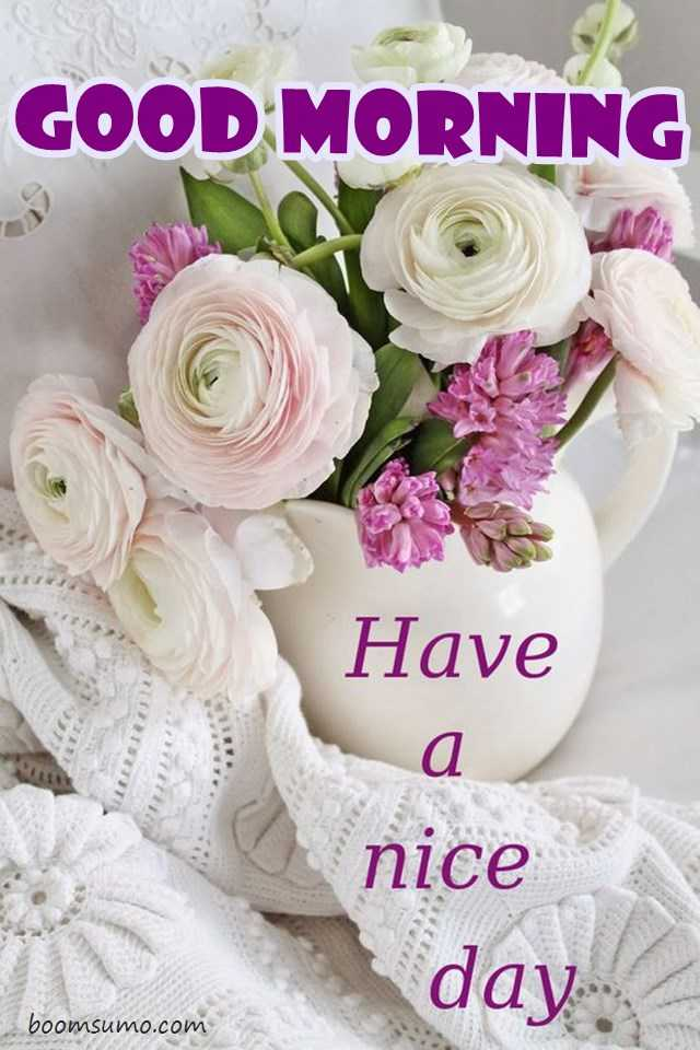 Good Morning Quotes Have A Nice Day