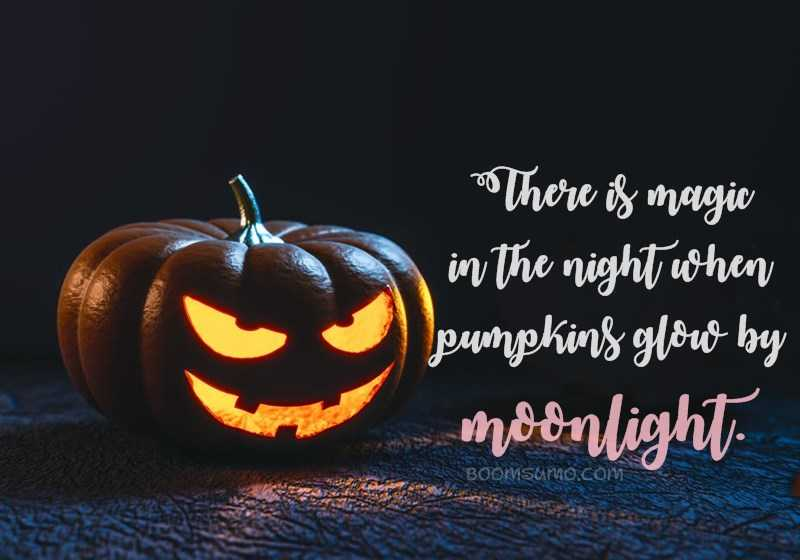 Number 13 Super Spooky Halloween Quotes That Will Scare You 1. U201c