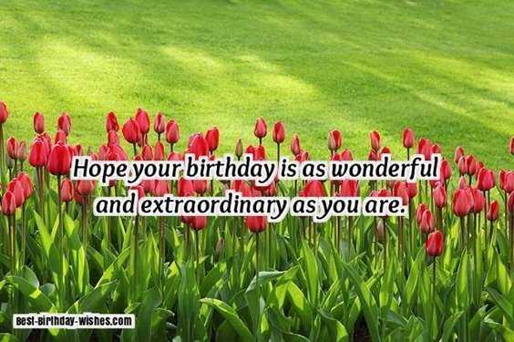 40 Friends Forever Quotes Best Birthday Wishes for Your Best Friend 3