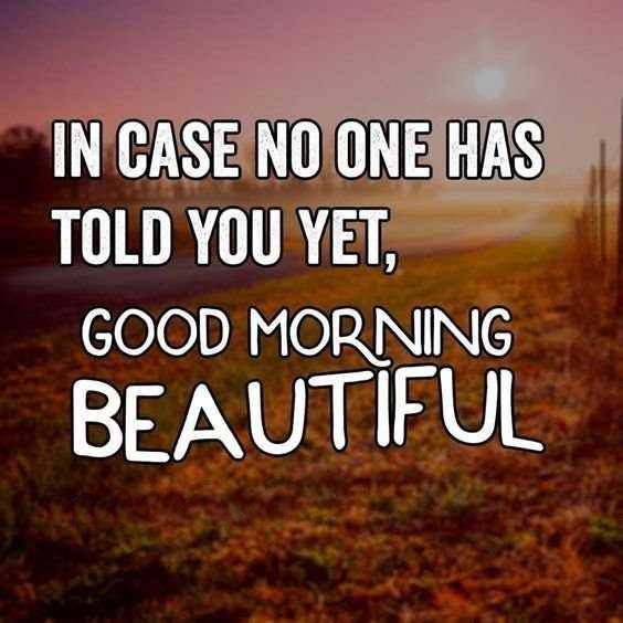 50 Good Morning Quotes Life Inspire You to Success 1