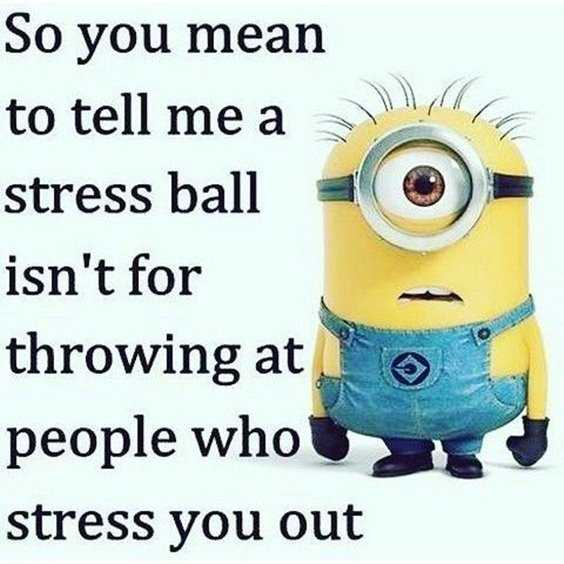 Top 79 Funny Minions Quotes and Funny Pictures 10