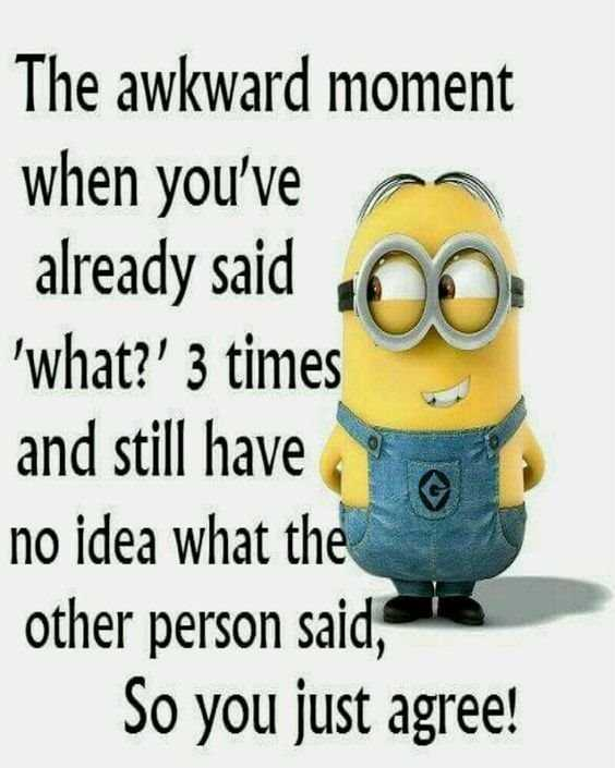 Top 79 Funny Minions Quotes and Funny Pictures 3