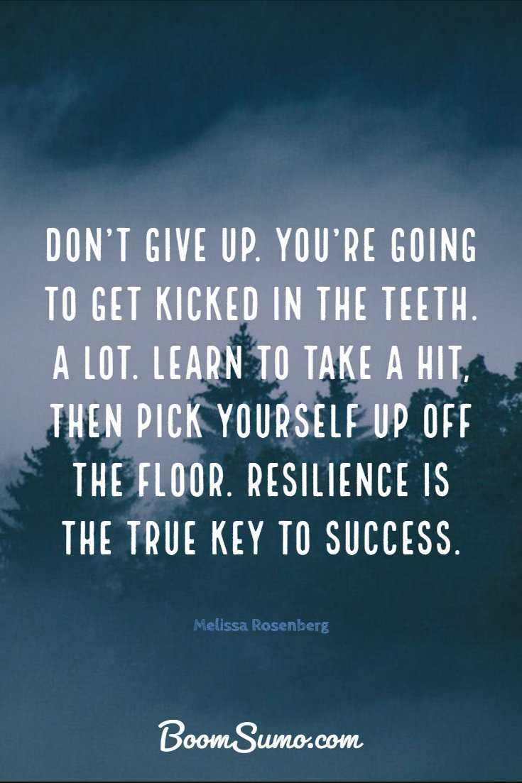35 of the Dont Give Up Quotes And Images 24