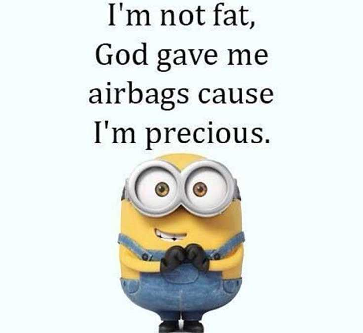 50 Best Funny Minion Quotes Funny Quotes Life 12