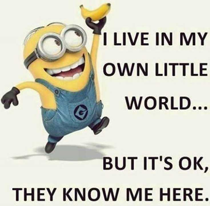 50 Best Funny Minion Quotes Funny Quotes Life Boomsumo Quotes