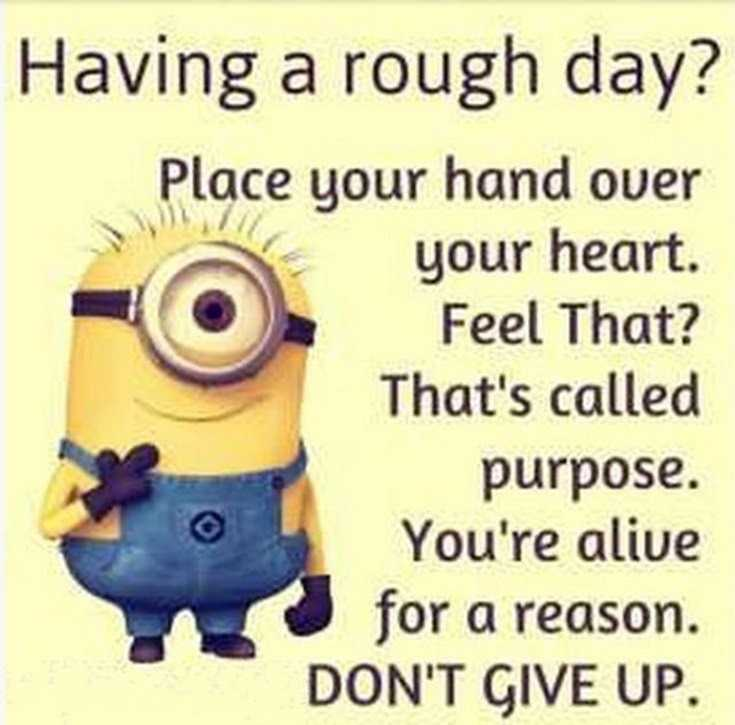 50 Best Funny Minion Quotes Funny Quotes Life 5