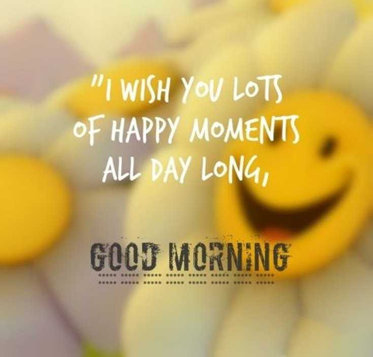 28 Good Morning Quotes with Beautiful Images 17
