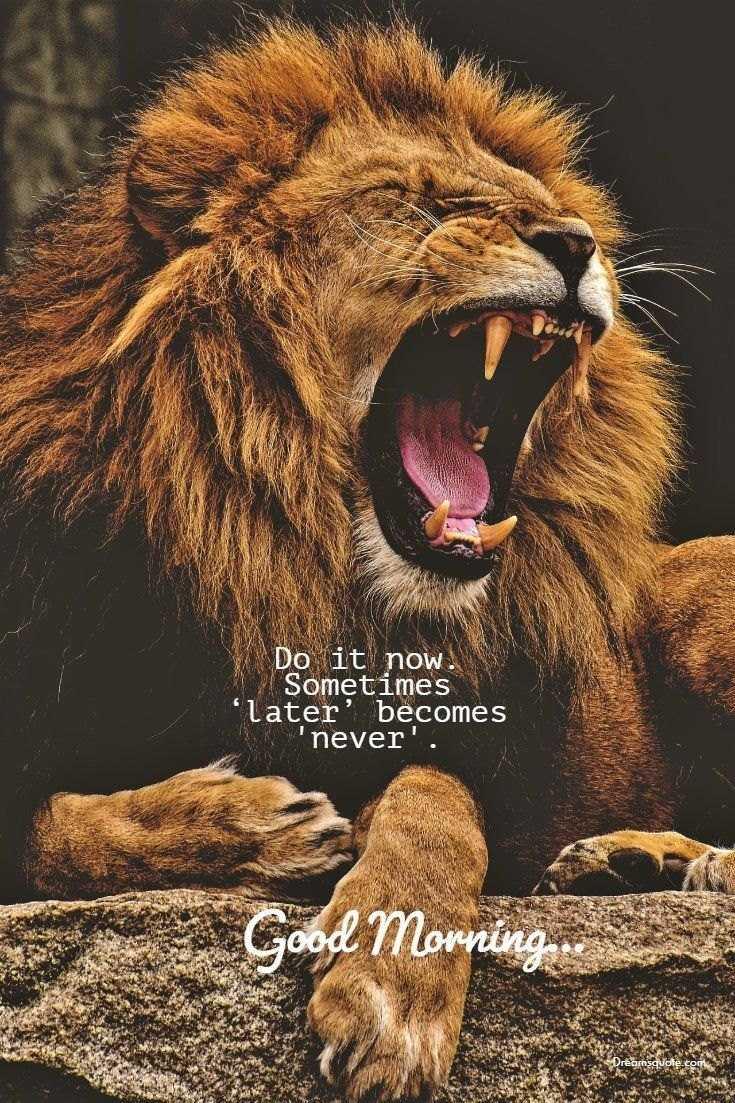 58 Motivational Quotes Quotes About Success 30