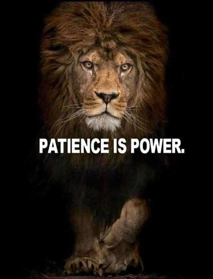 58 Motivational Quotes Quotes About Success 4