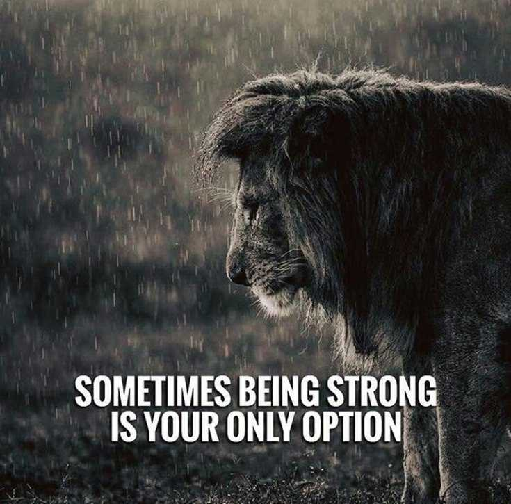 56 Inspirational Quotes About Strength and Perseverance Quotes About Change 1