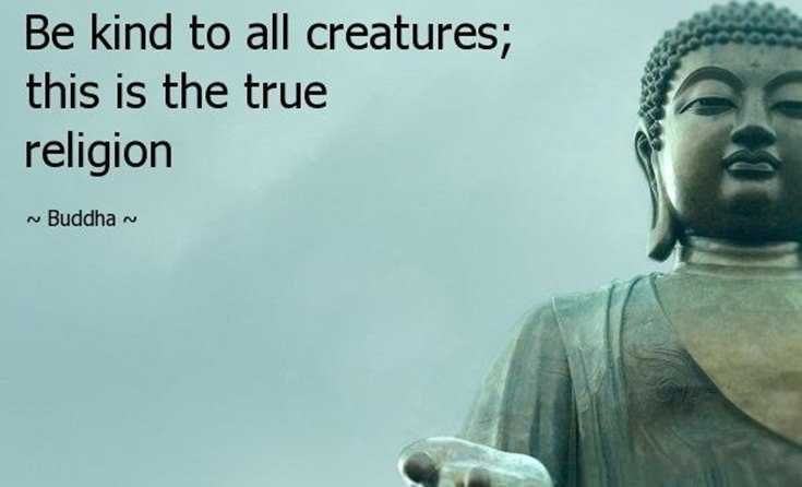 100 Inspirational Buddha Quotes And Sayings 12