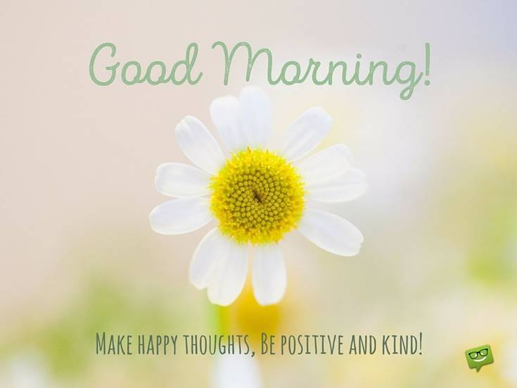 Best Good Morning Flowers with positive images