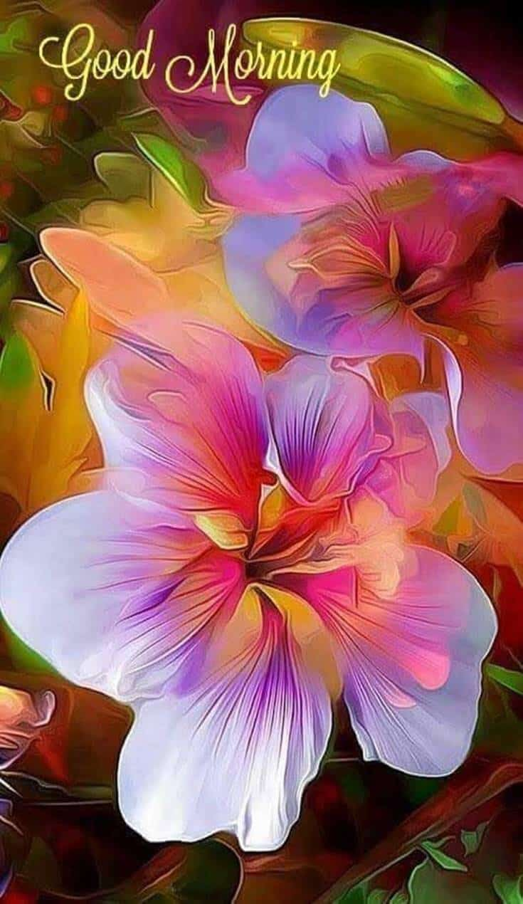56 Best Good Morning Flowers images 2