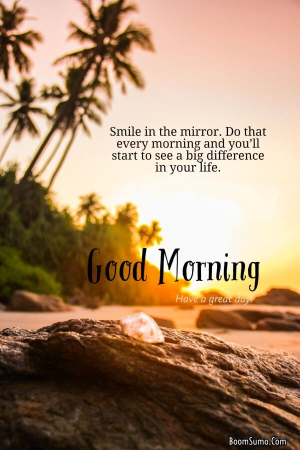 Best Good Morning images | good morning, good morning quotes, good morning greetings