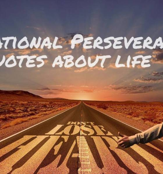 Inspirational Perseverance Quotes about life